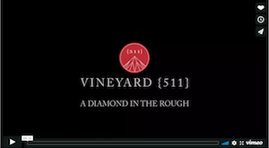 Vineyard {511} - A Diamond in the Rough