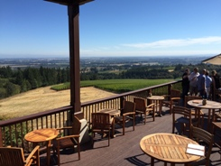 View of Willamette Valley from Domaine Drouhin